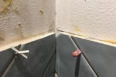 Toilet Haarlem